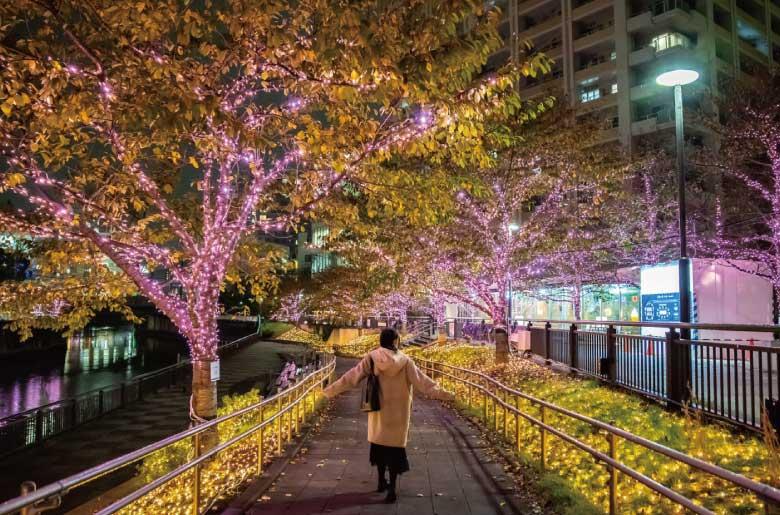 東京聖誕燈飾,目黑川