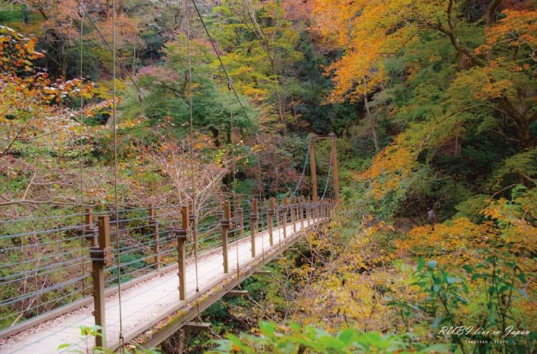 高尾山吊橋