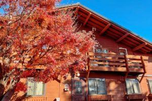 輕井澤小木屋「Azami Lodge」